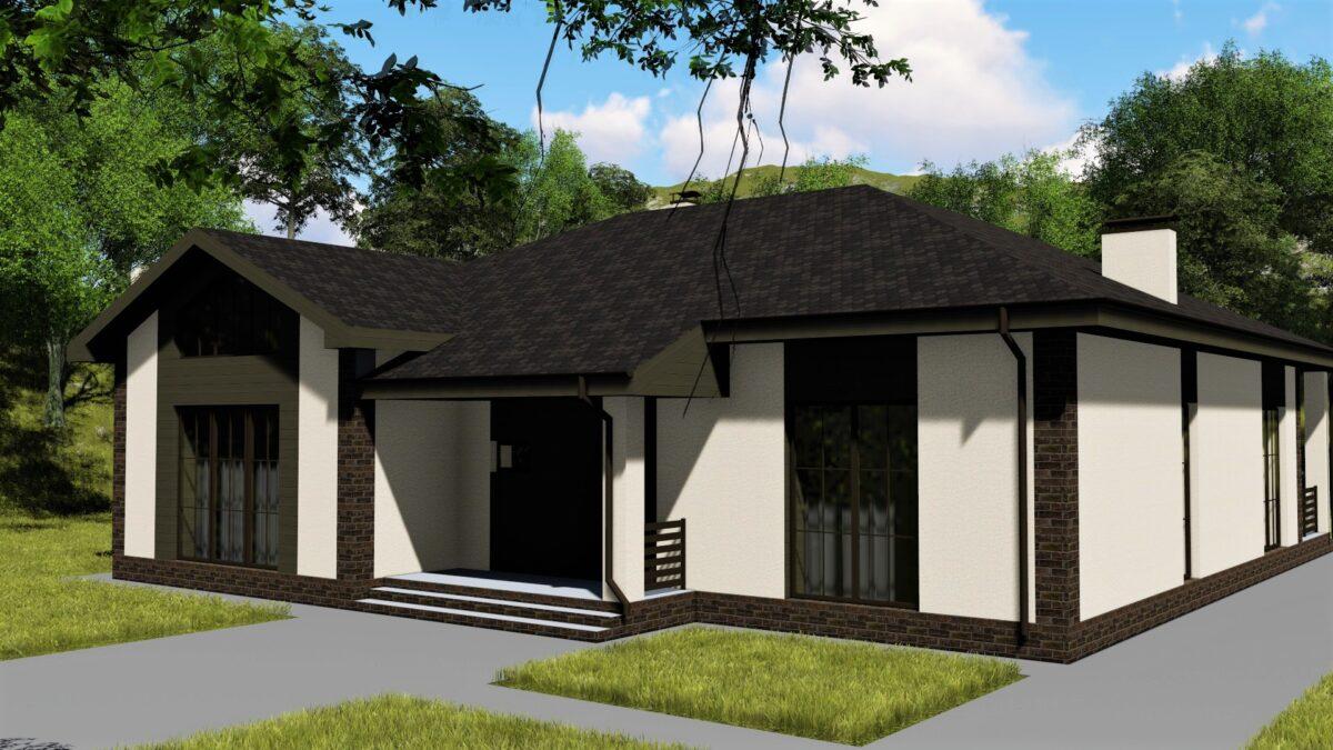 Трон D-028 с видеообзором. Проект одноэтажного дома на 2 спальни, с кабинетом и террасой